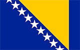 Bosnian/Herzegovinian Flag