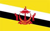 Bruneian Flag