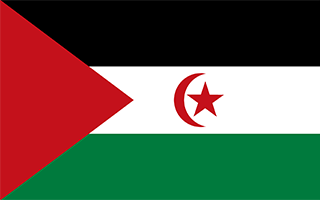 Flag of Western Sahara